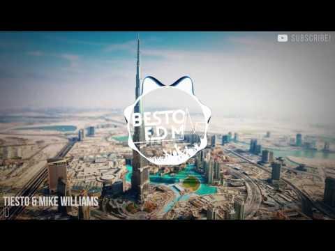 Tiësto & Mike Williams - ID [UMF Miami 2016]