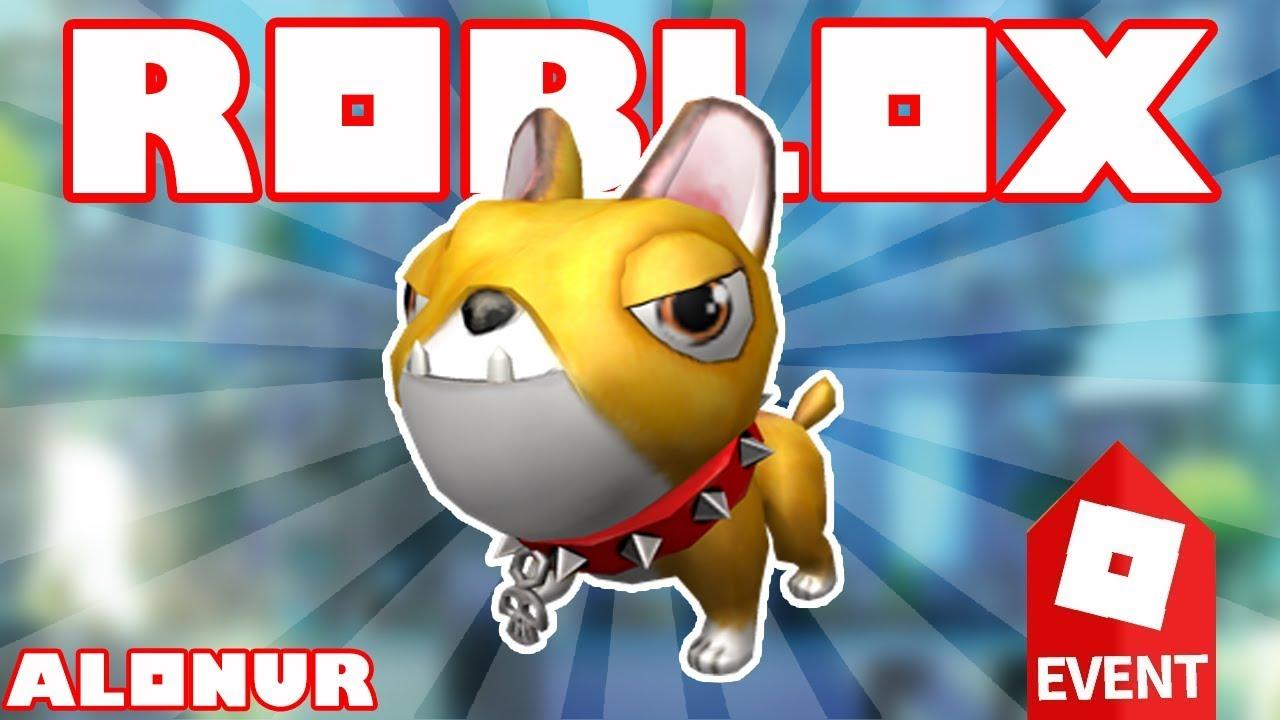 Roblox Next Gen Event Kak Poluchit Momo Companion Youtube