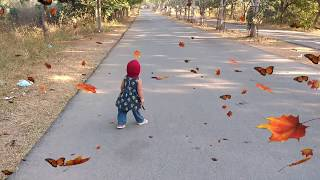 Babies Morning Walking for the First Time Compilation