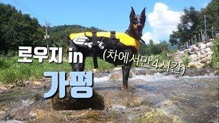 로우지 가평에서 수영연습하러 갔다~!!!(구명조끼쓸모없…