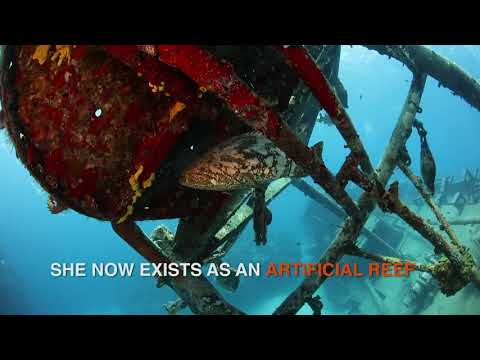 Cayman Islands: Kittiwake Wreck Grand Cayman