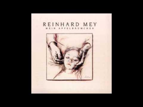 Reinhard Mey - Zeugnistag - Cover