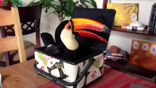 Toucan In A Sewing Box