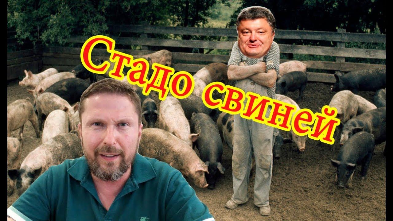 Распятый мальчик для стада свиней