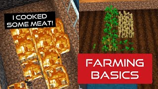 Farming Basics plus cooked meat!