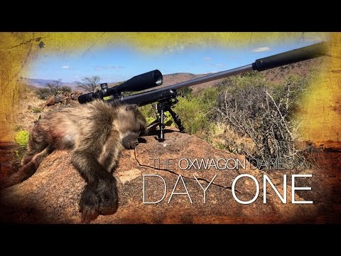 Shooting Baboons From The Kitchen Window | The Oxwagon Diaries - Day 1