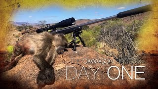 Shooting Baboons from the Kitchen Window! | The Oxwagon Diaries - Day 1