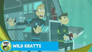 Wild Kratts: Salmon Run thumbnail