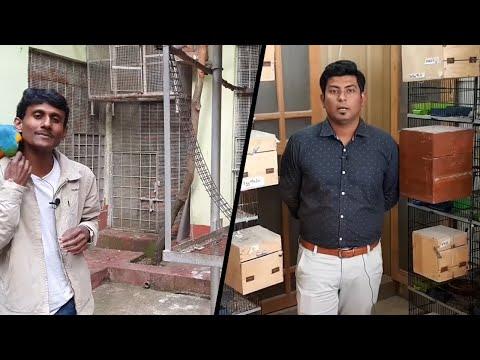 Parrot Dipankar & Nexus Birds Make Collab Video