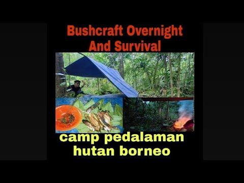 BUSHCRAFT OVERNIGHT KALIMANTAN-bermalam Dan Mancing Di Hutan Kalimantan