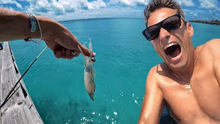 What I've found on Maldives. Catching a Lobster and Fish Right Under the Water Villa.
