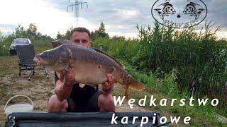 Karpiowanie #1 Duże karpie z Dzikiej Wody (Tarnów) | Mój skromny rekord