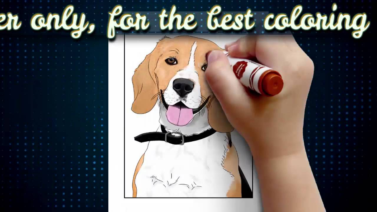 dog coloring pages book for kids & adults v1 dogs