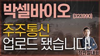 박셀바이오 (32399…
