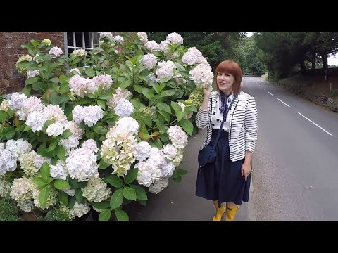 VLOG #7: Things to do in Cheshire & Shropshire
