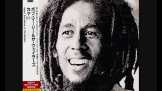 Bob Marley - Soul Shakedown Party (Rare version)