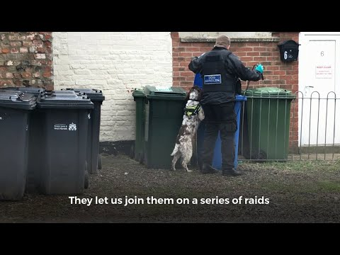 WATCH: Tobacco Raids in King's Lynn