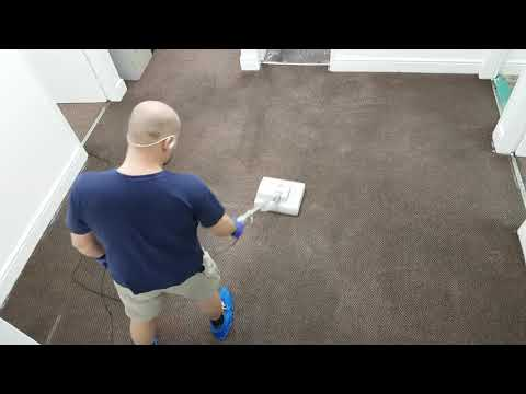 Commercial Carpet Cleaning Step-by-Step guide NZ
