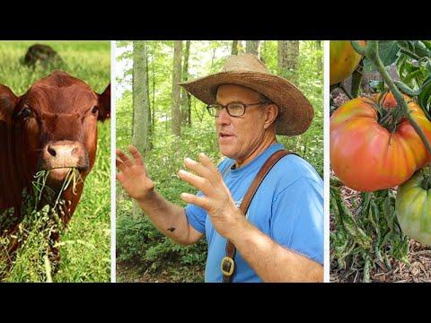 His OFF GRID Automatic WATER System Produces Food Abundance | Joel Salatin