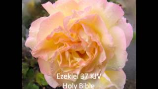 "Ezekiel 37 KJV   ""O ye dry bones, hear the word of the Lord."""