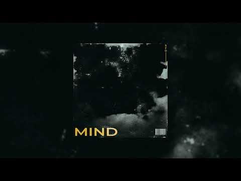Slippy - Mind (feat. Shannon Mora)