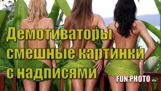 Демотиваторы смешные картинки с надписями на FUN PHOTO
