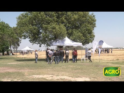 Bayer CropScience presentó el modelo Forward Farming en Argentina (#748 2017-12-02)