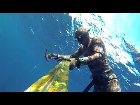 The Tastiest Fish Of Mediterranean Sea