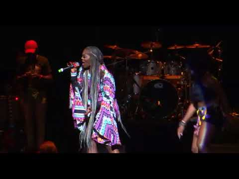 Tiwa Savage Live at One Africa Fest 2