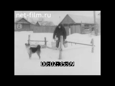 1989г. с. Языковка Аткарский район Саратовская обл