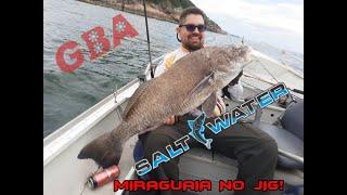 Férias da GBAwatercooler - Pescaria de Miraguaia no Guarujá com a Saltwater Team - 22/12/2019
