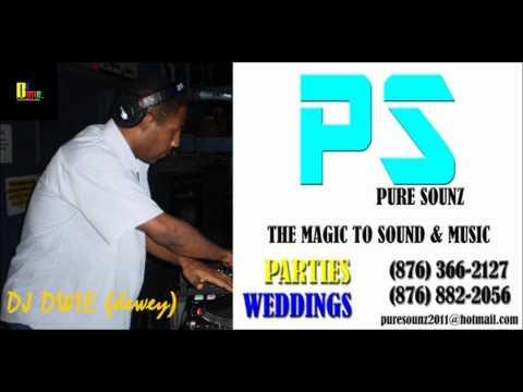 DJ DWIE & PURE SOUNZ 2012 SOCA ULTRAMIX.wmv