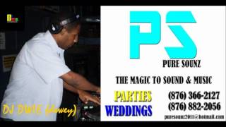 DJ DWIE & PURE SOUNZ 2012 SOCA ULTRAMIX.wmv