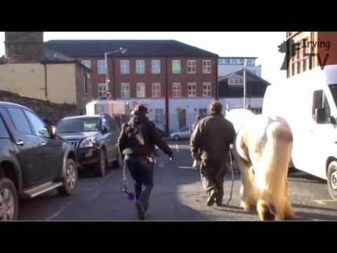 Smithfield Horse Market - Dublin