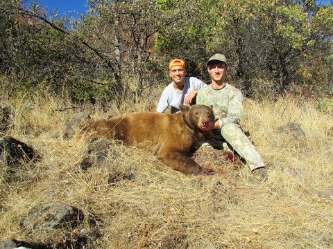 Northern California Bear Hunt Insane Cinnamon Phase Bear Killshot!