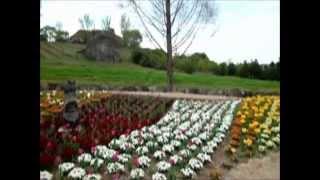 プリンの散歩 岡山農場公園ドイツの森.wmv