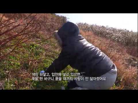 한국인의 밥상 - Korean Cuisine and Dining 20150305 #001