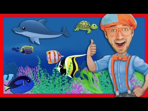 Story Time with Blippi | Treasure Chest