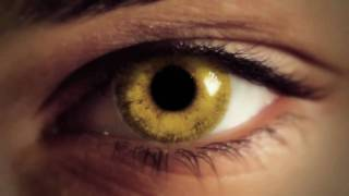 Beautiful Darkness- Book Video Trailer