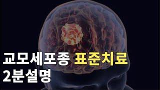 교모세포종 표준치료 2분설명