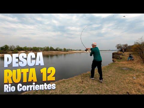 PESCA POR LA RUTA 12. Rio Corrientes