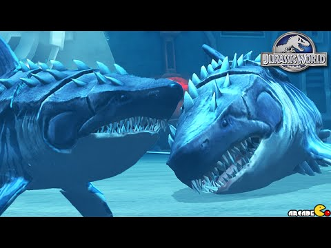 Megalodon Vs Megalodon Max Level Aquatic Battle - Jurassic World The Game