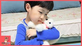 아기 고양이 햄스터 나타났어요! 귀요미 동물 인형 키우기 어린이 장난감 놀이 ♡ Baby doll animal pet toy play | 말이야와아이들 MariAndKids