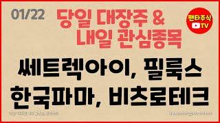 주식 대장주& 내일 관심종목(쎄트렉아이,한국파마…