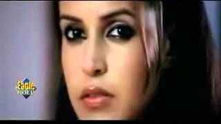 Assi Ishq Da Dard   HD Full Video Song From Movie Sheesha MH Production Videos   Video Dailymotion
