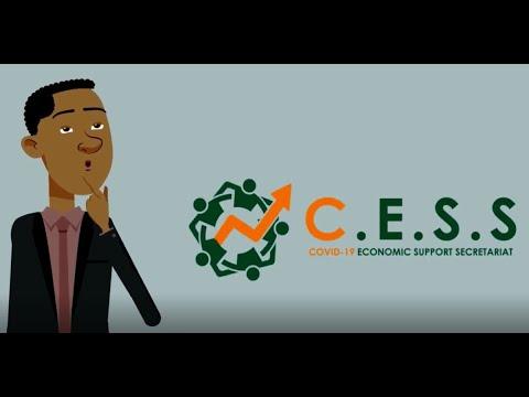 Income Support (Covid - 19 Economic Support Secretariat - CESS Grenada)