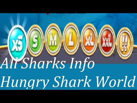 All Sharks Info (xS, S , M , L , XL , XXL , !! Sharks) - Hungry Shark World