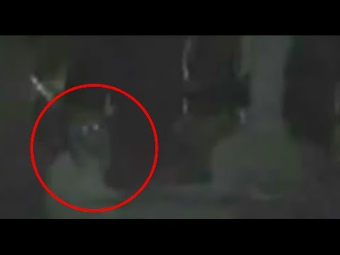 5 Disturbing HAUNTED GRAVEYARD Footage Caught On Camera