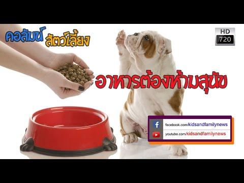 อาหารต้องห้ามสุนัข