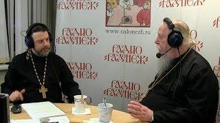 Радио «Радонеж». Протоиерей Димитрий Смирнов. Видеозапись прямого эфира от 2019.01.05